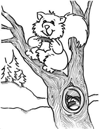 Dibujos de ardillas para colorear » ARDILLAPEDIA